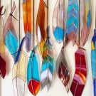 Assorted Stained Glass Feathers by Colin Adrian
