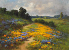 """California Poppies, Sierra Foothills"" by William F. Jackson"